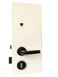 Hotel Door Lock Supplier in Malaysia